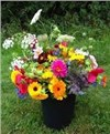 Large U-Pick Bouquets