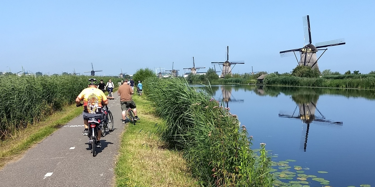The Northwestern alumni tour group bicycles past the windmills at Kinderdijk.