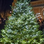 Northwestern invites community to President's Christmas Tree Lighting